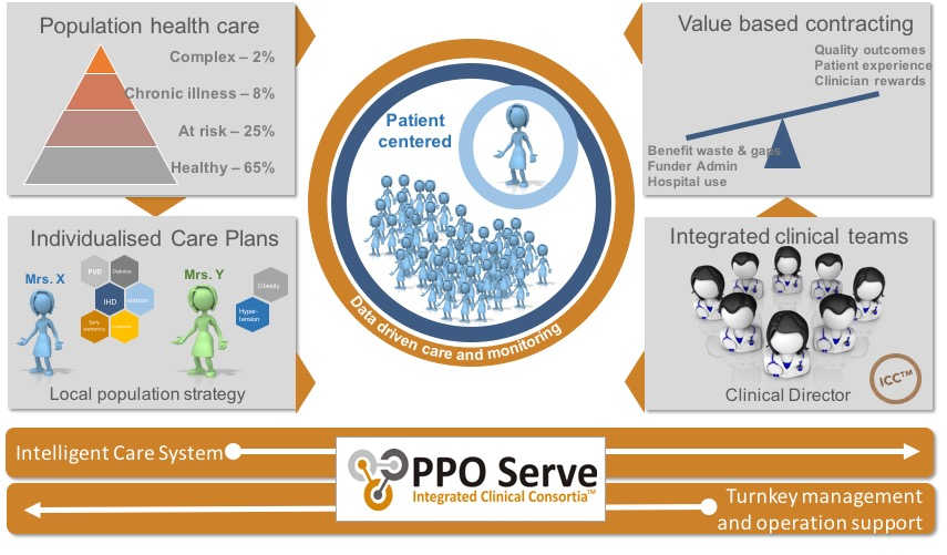 PPO Serve business model